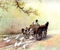 Barulho da carroça